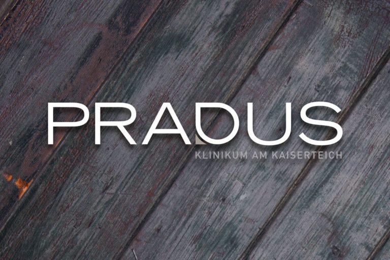 Pradus Düsseldorf · Logo-Entwicklung · Wegeleitsystem · Grafikstudio Carreira · Susi Carreira · Werbeagentur Bad Oeynhausen · Minden · Bünde